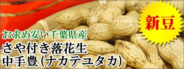 【新豆】さや付き落花生「中手豊」