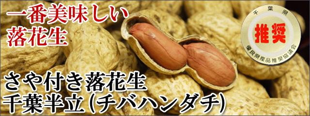 新豆一番おいしい落花生、千葉県産さや付き落花生千葉半立